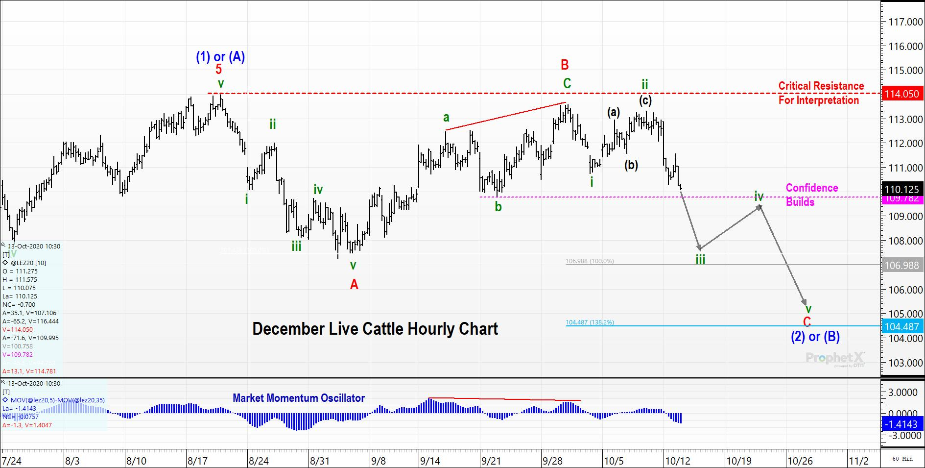 Live Cattle Hourly